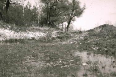image004-Bildgroesse-aendern.jpg