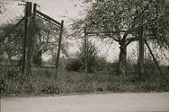 image009-Bildgroesse-aendern.jpg